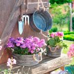 Hier finden Sie alle Körbe, Ampeln, Kästen und Wandhaken für Ihre Pflanzen