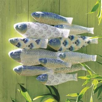 A2558 Fischschwarm