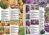 Online-Katalog 2019 Keimzeit