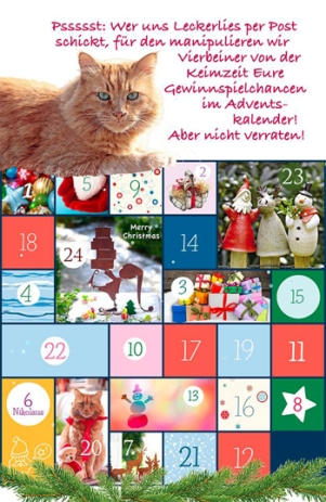 Keimzeit Adventskalender