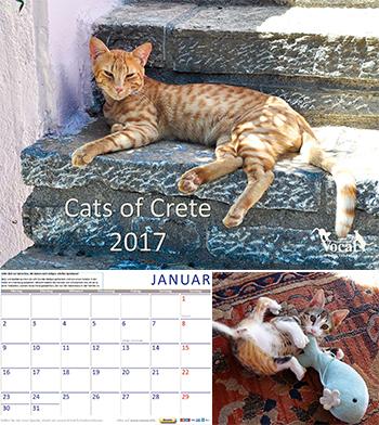 Vocal-Katzenkalender für Kreta