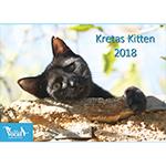 Katzenkalender Kretas Katzen 2018