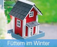 Füttern im Winter